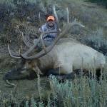 ralph-with-diy-wyoming-bull
